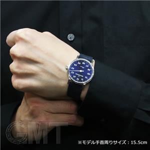 PH308 ブルー 【正規輸入商品】