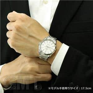 アクアテラ マスターコーアクシャル 41.5mm 231.10.42.21.02.006