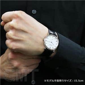 3919SG 日本限定モデル