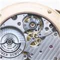 ROGER DUBUIS ロジェ・デュブイ エクスカリバー 42 マイクロローター オートマティック RDDBEX0483 14